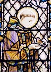 St Francis window in Cradley Church, by John D.